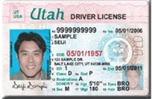 drivers license for international students